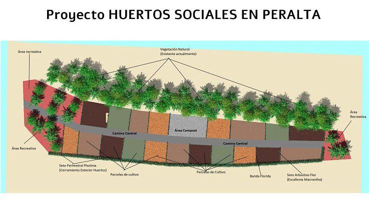 Proyecto: «HUERTOS SOCIALES EN PERALTA»